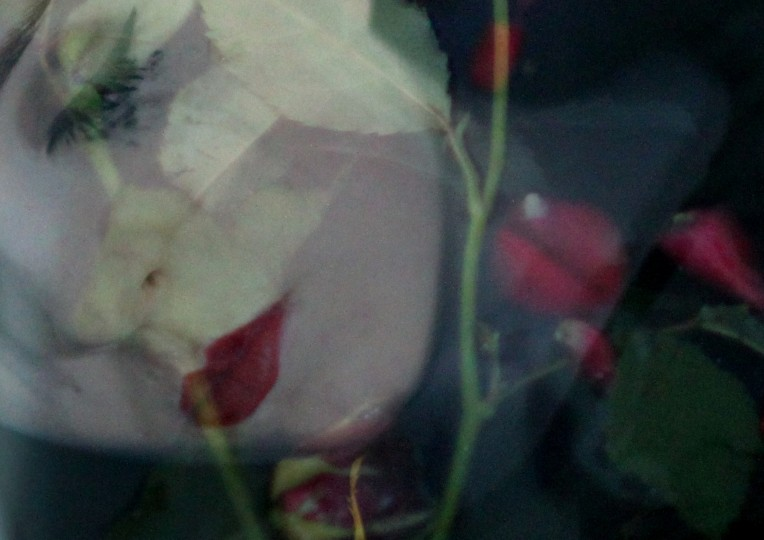 Ophelia Best1